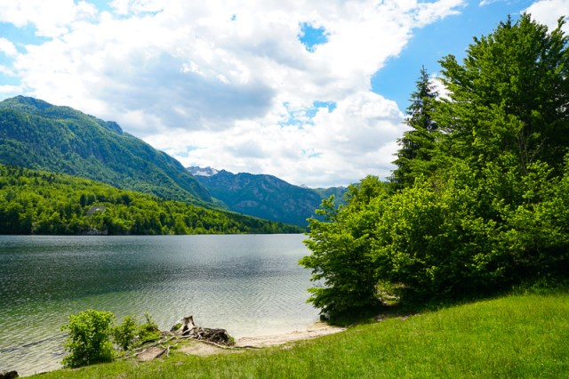 Water view from shore Lake Bohinj Slovenia