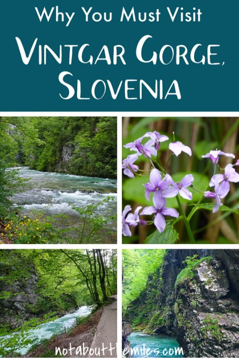 Planning a visit to Slovenia? If you love nature and hiking, you must add Vintgar Gorge to your itinerary!