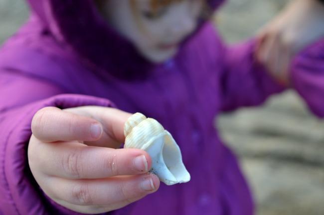 girl-with-sea-shell