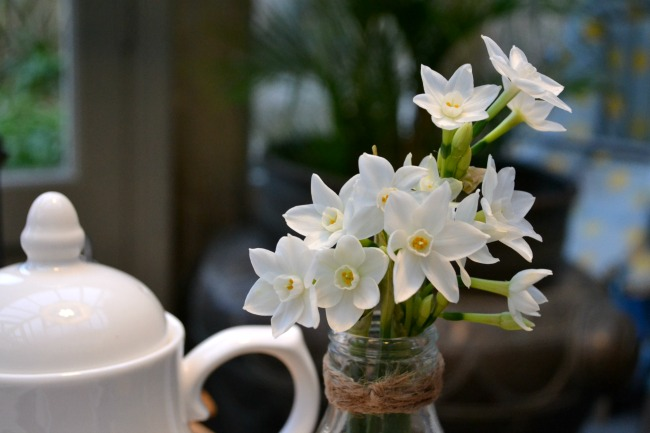 flowers-at-breakfast