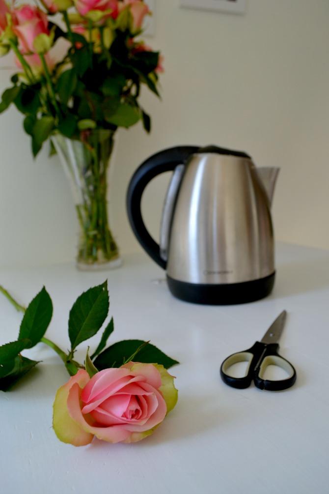 rose-kettle-scissors
