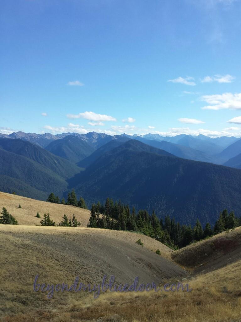 travel, travel blog, Washington, Southwest Airlines, Port Orchard, Olympic Mountains