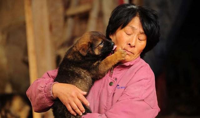donna-saves-100-cani-Yulin-1
