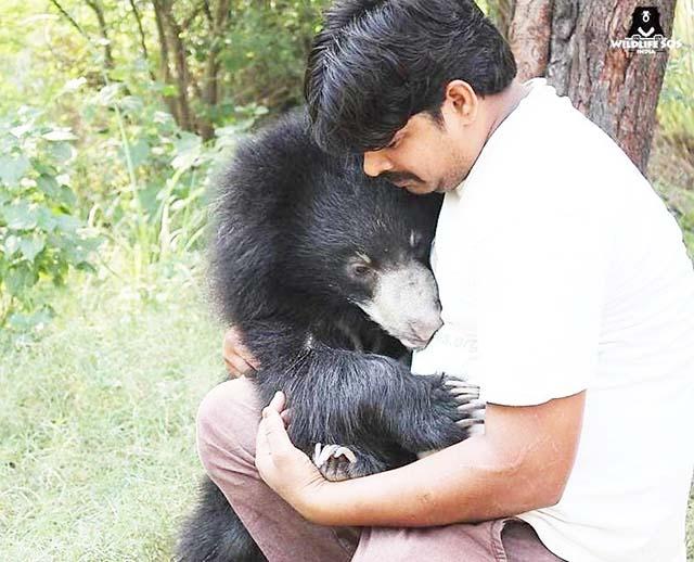 Orso abbraccia la sua badante