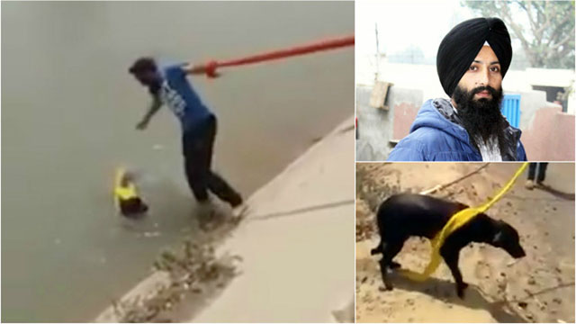 Sikh uomo si tolse il turbante per salvare un cane da annegamento