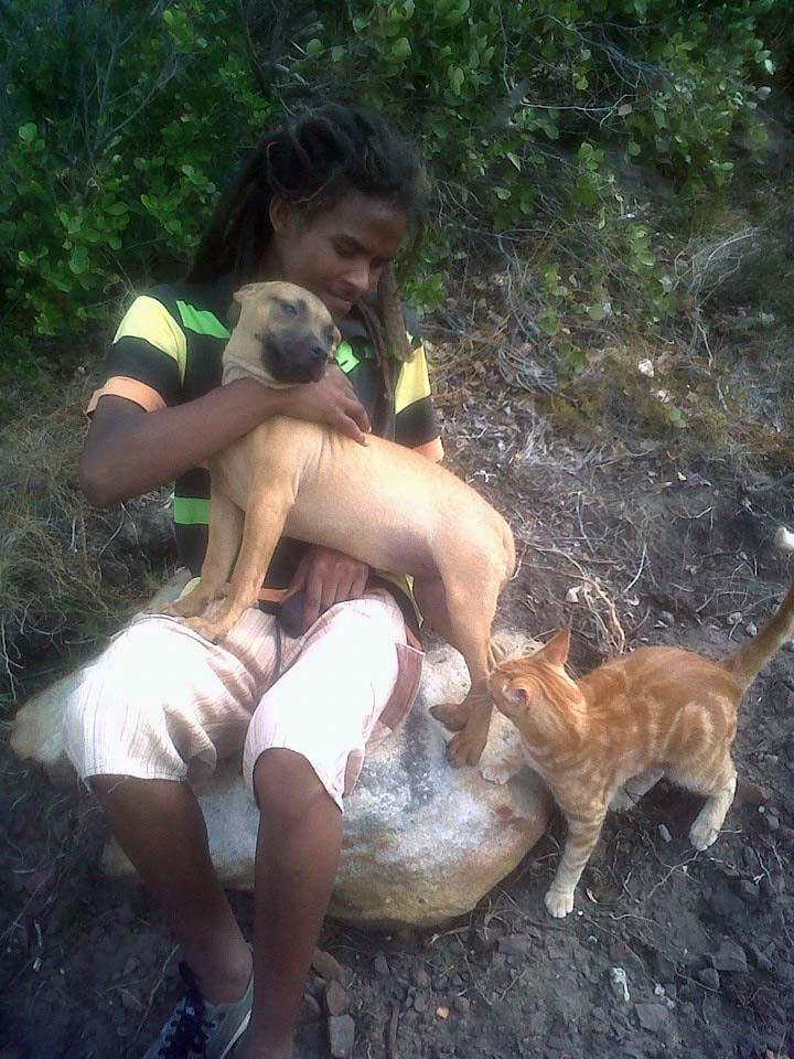 Shaygam y sus perros rescatados