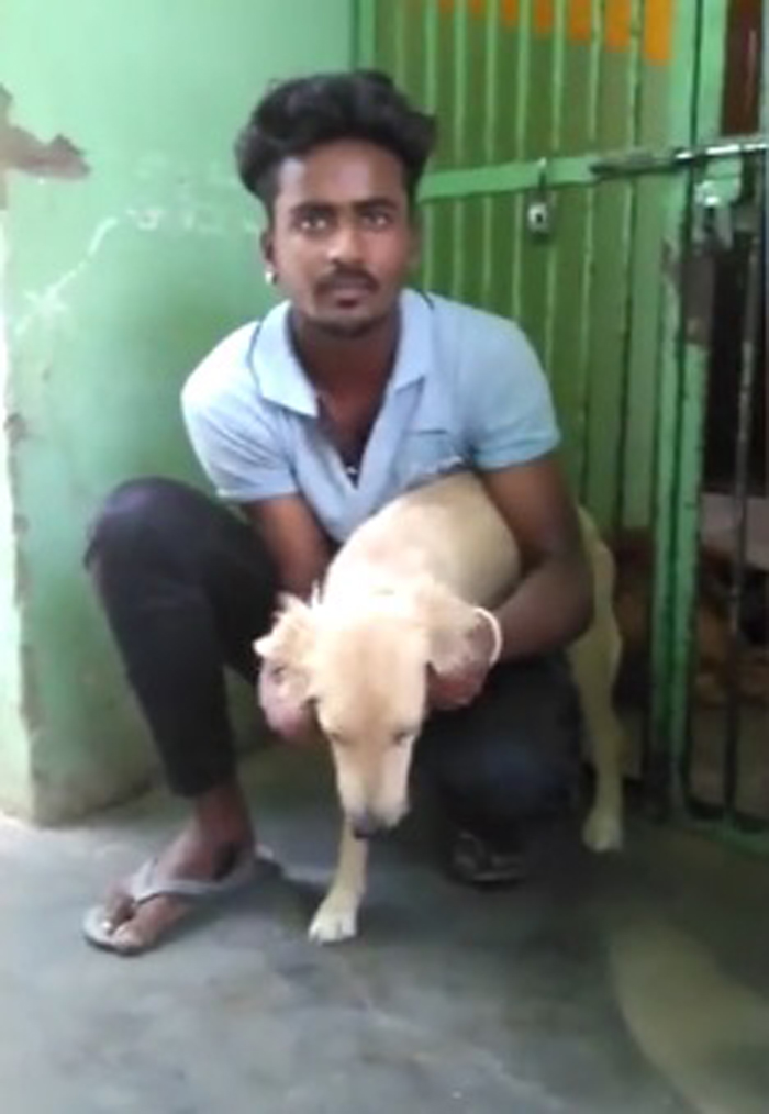 Nandu y la perra rescatada