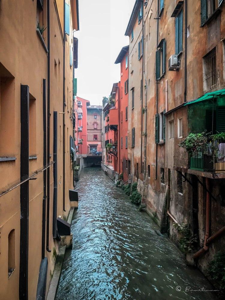 La Finestrella. Bologna. Italia 2017.