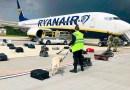 Belarús es acusada de «secuestro de Estado» mientras crece la furia por el desvío de un vuelo de Ryanair