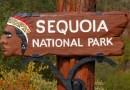 Senderista falleció al caer 152 metros desde la cima de una montaña en el Parque Nacional de Sequoia en California