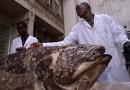 Pez que fue catalogado una vez como un «fósil viviente» sorprende a los científicos de nuevo