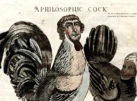 Presidential Penis Politics: A Micro-History