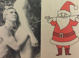 Archives of Desire: Soft-Core Pornography and Activism in the 1960s