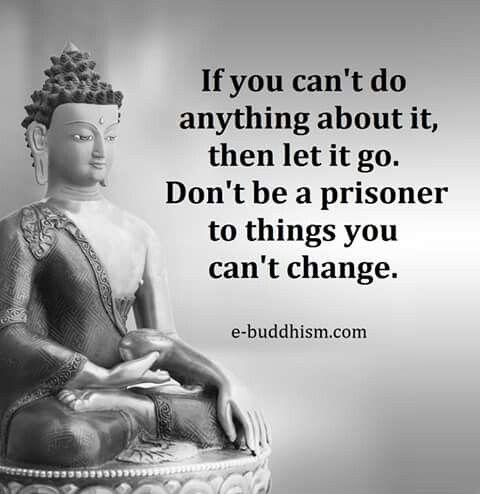 7794c6ab1acfbcee4a8c618eecc7ccfc--buddha-meditation-tiny-buddha