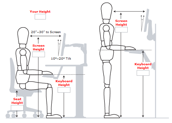better posture office chair horse rocking standing desk guide: measurements, examples and benefits