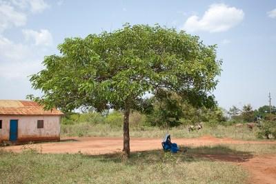 Alenga, Uganda