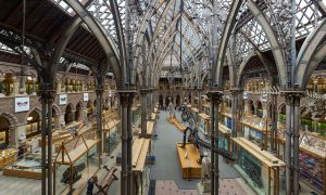 Pitt Rivers Museum Interior Oxford