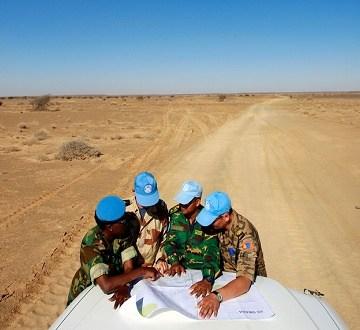 Sahara: la Grande-Bretagne souhaite plus de temps pour la MINURSO