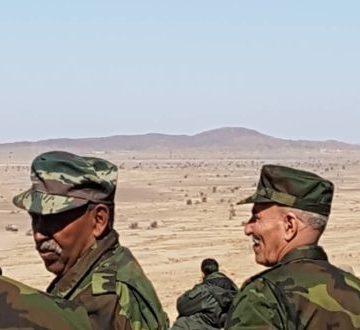 Abdalahi Hbib, ministre de la Défense sahraouie «Les manœuvres militaires consacrent notre souverainetésur les territoires libérés » – MENADEFENSE