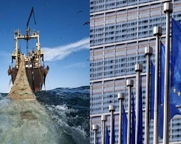 Acuerdo de pesca UE-Marruecos: el POLISARIO califica de operación de auténtico saqueo la ratificación por el PE del acuerdo de pesca | Sahara Press Service
