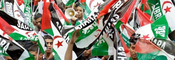 98 Saharawi groups call on European Parliament to reject fish deal – wsrw.org