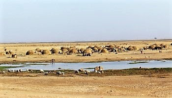 Generación de la Amistad saharaui: Después del gran río, nadie habla bambara