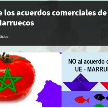 Entrevista con el profesor Carlos Ruiz Miguel sobre los acuerdos comerciales de la UE con Marruecos – Delegación Saharaui en Euskadi