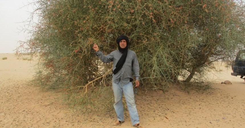 Generación de la Amistad saharaui: Tiris en el recuerdo. Un poema de Ali Salem Iselmu