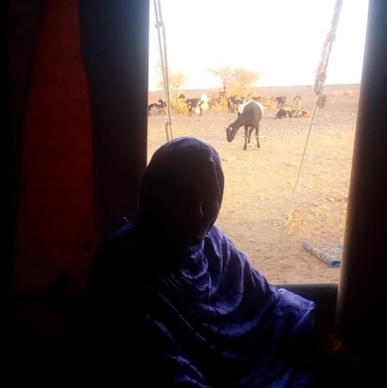 Malada. El Sahara y nada más >> Y… ¿dónde queda el Sáhara? >> Blogs EL PAÍS