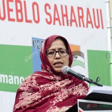 La representante del Sahara Occidental para España pide a Europa proteger los observadores que Marruecos expulsa del territorio | DIARIO LA REALIDAD SAHARAUI