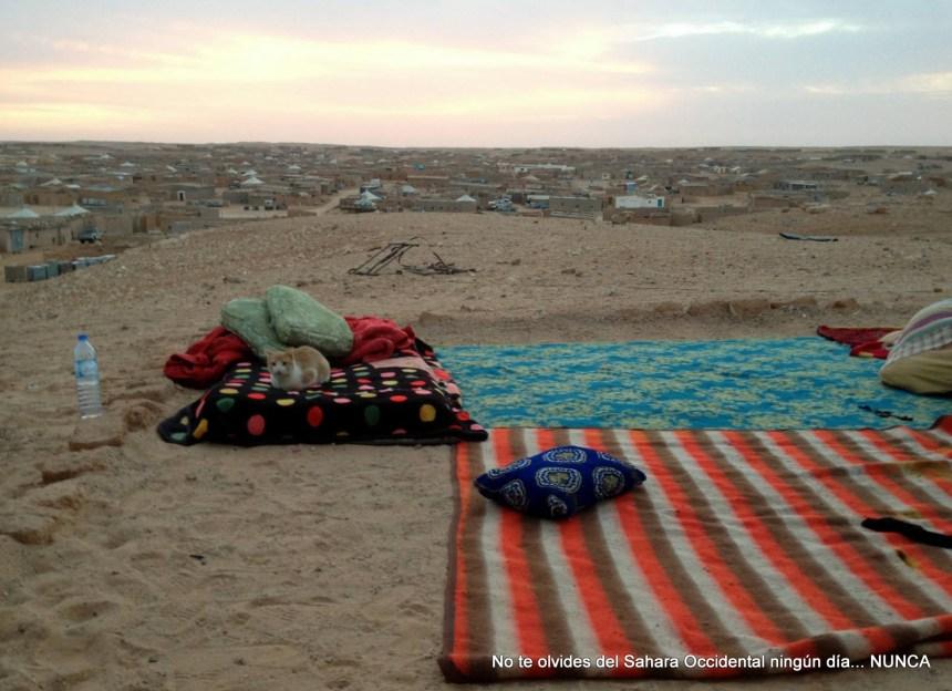 La Actualidad Saharaui: 15 de septiembre de 2019 🇪🇭