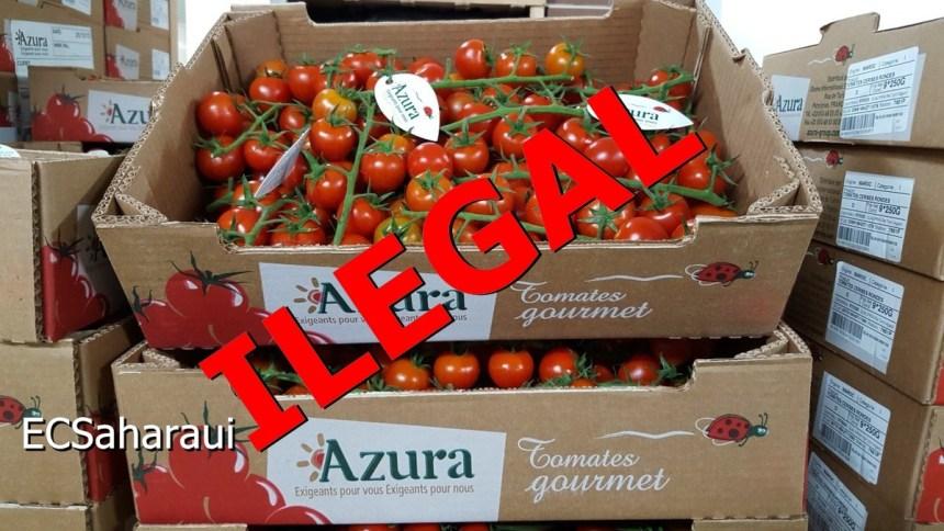 Organizaciones alemanas e irlandesas exigen a «Messe Berlin» boicotear el controvertido productor francés del tomate saharaui AZURA GROUP | ECS