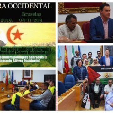 284 KM CORRIENDO POR LA LIBERTAD DE LOS PRESOS POLÍTICOS SAHARAUIS   PUSL