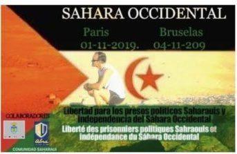 Marathon : Paris à Bruxelles pour sensibiliser le public aux souffrances des prisonniers politiques sahraouis   Sahara Press Service