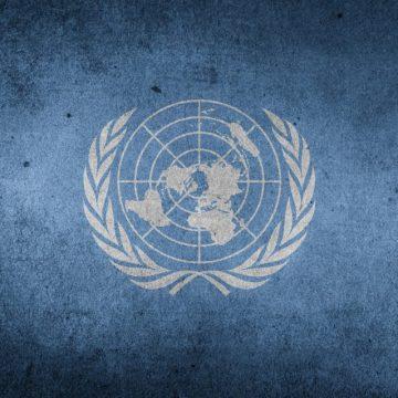 La APDHE solicita al Consejo de Seguridad de las Naciones Unidas que fije fecha para celebrar el referéndum en el Sáhara Occidental – apdhe