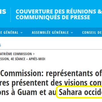 Quatrième Commission: Au titre du Sahara occidental, pas moins de 25 pétitionnaires se sont exprimés, cet après-midi, sur une liste qui en comprend 131
