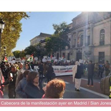 Multitudinaria manifestación en Madrid para denunciar la ocupación del Sáhara Occidental | Tercera Información