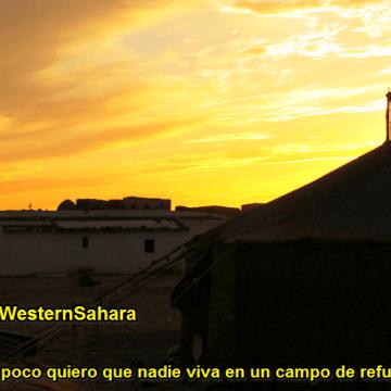 La Actualidad Saharaui: 4 de enero de 2020 🇪🇭