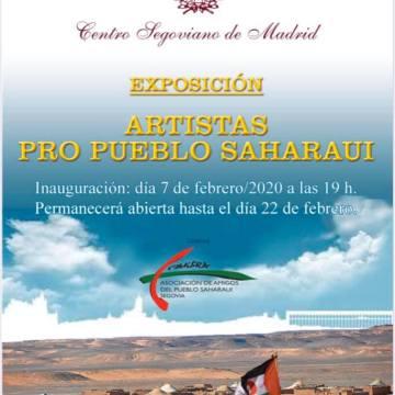 Segovia con el Sáhara: Exposición solidaria «Artistas pro pueblo Saharaui»