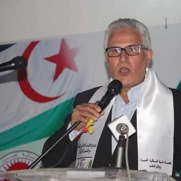 """""""La juventud europea esta llamada a presionar a sus gobiernos para respetar la soberanía del pueblo saharaui"""": Comité Argelino de Solidaridad con el Pueblo Saharaui   Sahara Press Service"""