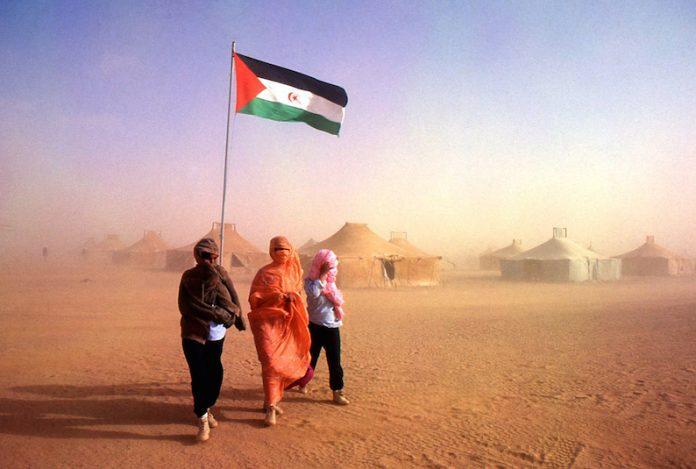Las graves consecuencias del coronavirus en los campos de refugiados del Sáhara Occidental – Diario16