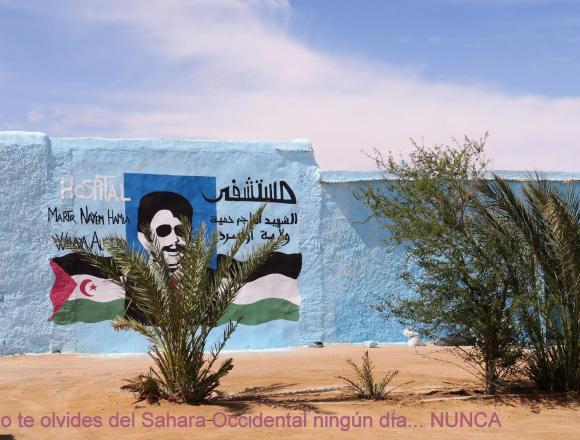 La Actualidad Saharaui: 8 de abril de 2020 🇪🇭