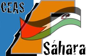 47 años de resistencia y unidad del Pueblo Saharaui – CEAS-Sahara