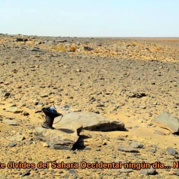La Actualidad Saharaui: 13 de mayo de 2020 (fin de jornada) 🇪🇭