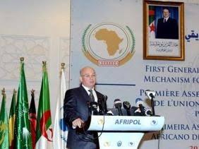 La cuestión saharaui centro de debate entre la UA y el gobierno español | Sahara Press Service