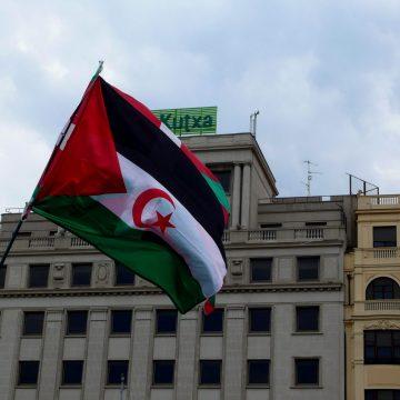 La Actualidad Saharaui: 7 de julio de 2020 (fin de jornada) 🇪🇭