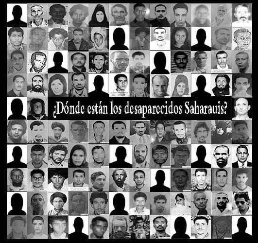 La Actualidad Saharaui: 29 de agosto de 2020 🇪🇭