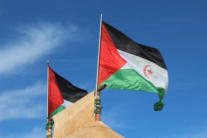 🔴 Marruecos trata, sin éxito, de rebajar la presencia diplomática de la República Saharaui en el escenario mundial