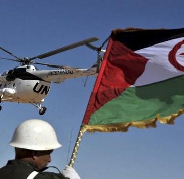 Ministerio saharaui de TT.OO y Diáspora anuncia la creación de un mecanismo para la defensa de los DD.HH en el Sáhara Occidental