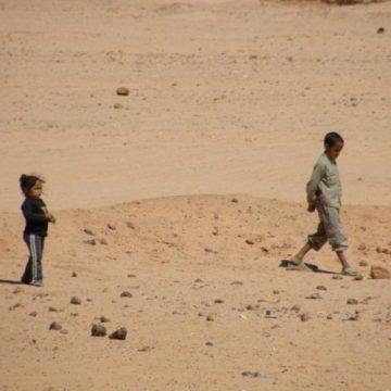 La Actualidad Saharaui: 1 de agosto de 2020 (fin de jornada) 🇪🇭 | Eid el-Adha Mubarak 🕋🐏